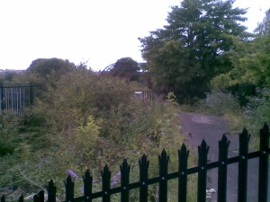 Could this abandoned rail bridge by Stapleton Rd. station one day connect communities long divided by the M32?