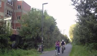 George Ferguson wants to build innovative cycle houses- right on top of this mature hedgerow along the Bristol-Bath Cycle Path