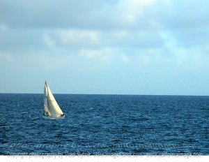 Marina-Sail-Boat